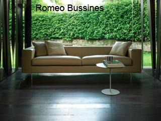 Romeo Bussines