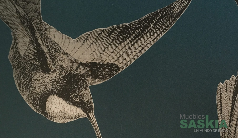 Papel pintado, pájaros ilustrados