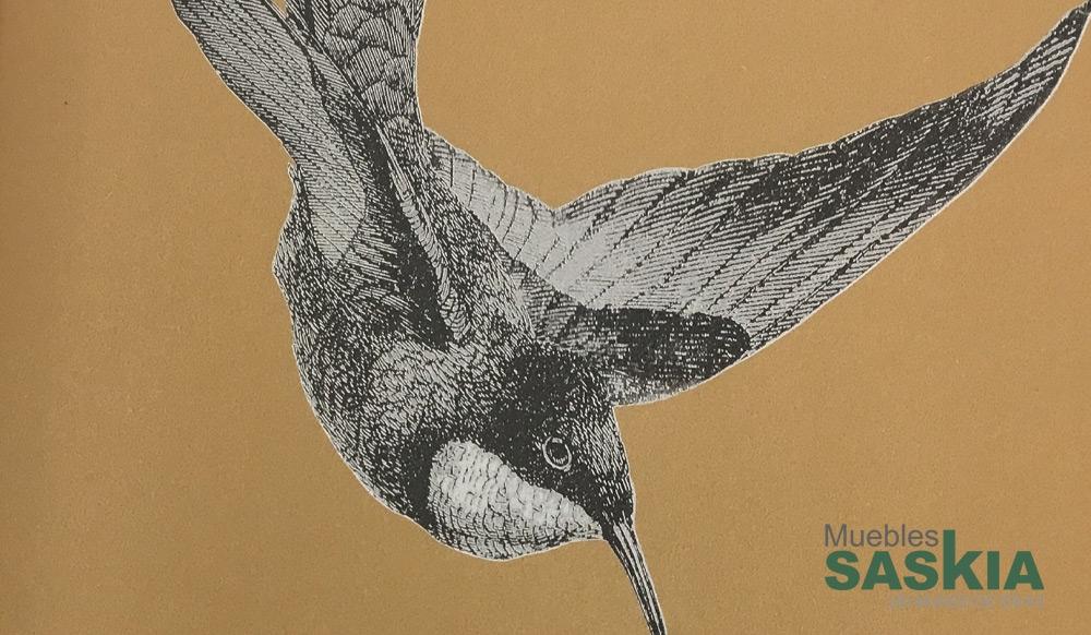 Papel pintado, colibrís ilustrados