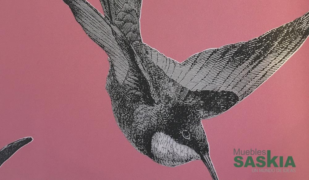 Papel para pared, motivos colibrí