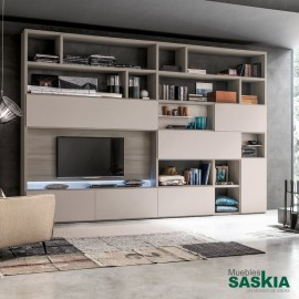 Composición de muebles de salón con estantería