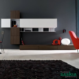 Mueble para salón de tendencia